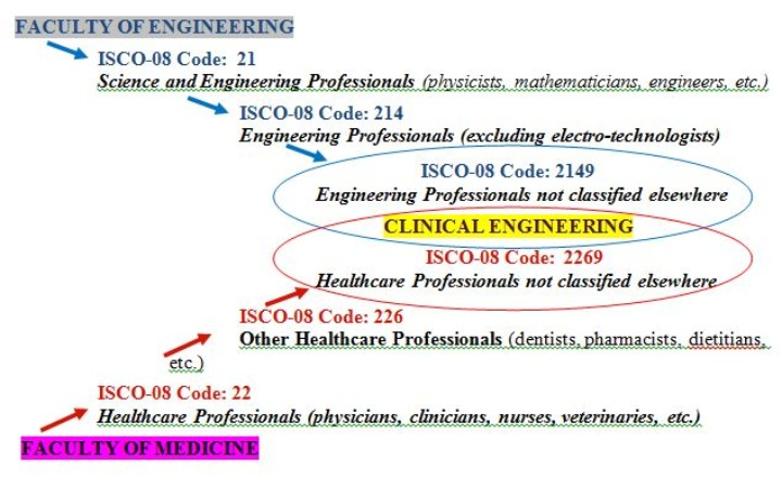 Classification of Biomedical/Clinical Engineer (c)